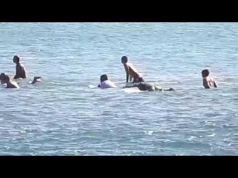 maui-hawaii-surfing-during-high-surf-warnings