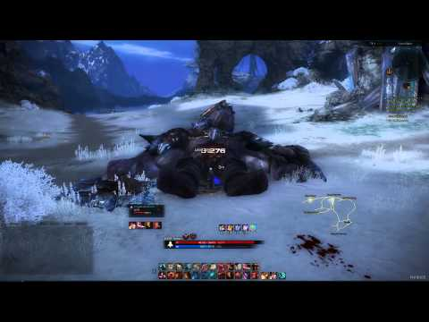 Tera online [US]: Lv60 Slayer with 23% attack speed Killing BAM Demo