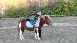 poney-moissac-escapade-compostelle.MOV
