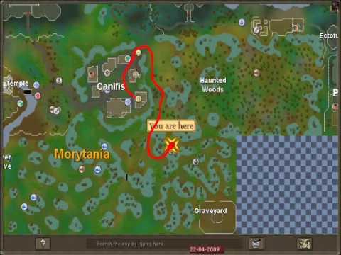 Runescape-How To Catch Swamp Lizards