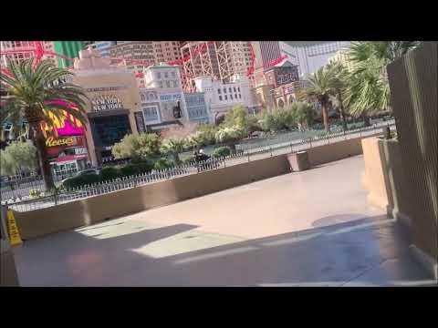 Spin palace online casino bonus