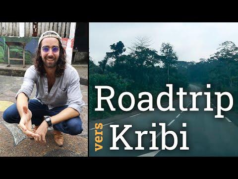 ROADTRIP vers KRIBI : de YAOUNDÉ à SANGMELIMA | Vlog d'un Expatrié français au Cameroun