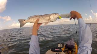 Kayak Fishing in West Galveston Bay, Texas - July 6,2012.wmv