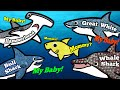 Sea Animals for Kids, Learn Names and Sounds | Great White Shark, Whale Shark, Hammerhead Shark