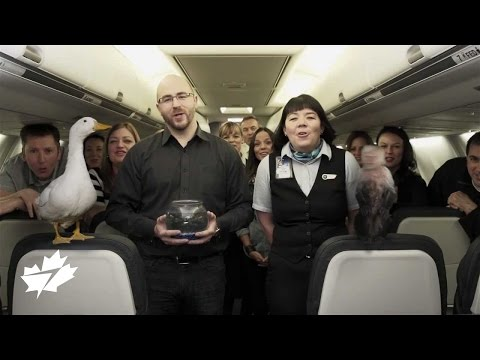 Introducing WestJet