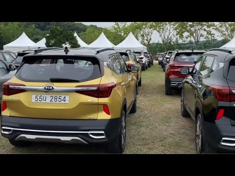 KIA Seltos Walkaround All Colours (New) Event ! Interior + Exterior Features