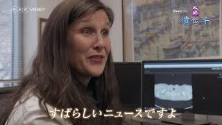 NHKスペシャル 人体II 遺伝子 PV