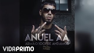 Anuel AA - Mi Vida [Official Audio]
