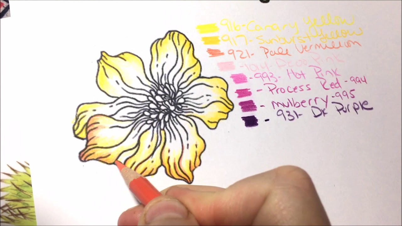 Advanced Flower Coloring Tutorial How To Color Flowers For Adult Coloring Books Lisa Brando Youtube