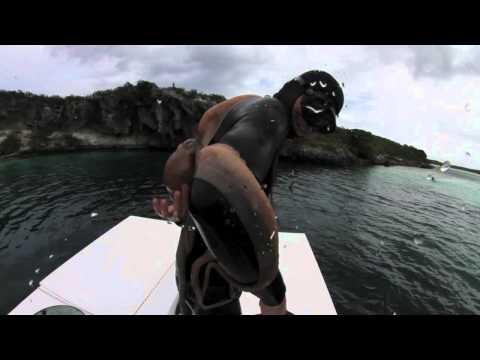 Octopus got me! 3.2.2012 Dean's Blue Hole