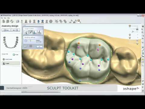 Single Anatomical Modeling - YouTube