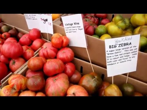 Heart of Fairfield Ep 2 -Tomato Festival 2015