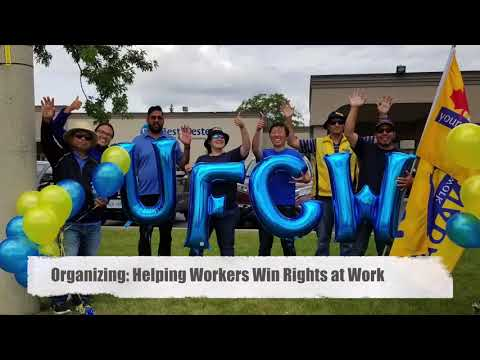 UFCW Canada Local 1006A: A Dynamic Progressive Union for Ontario's Workers