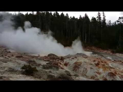 Back Basin & Steamboat Geyser - FULL VIDEO TOUR (Norris Geyser Basin, Yellowstone National Park, WY)