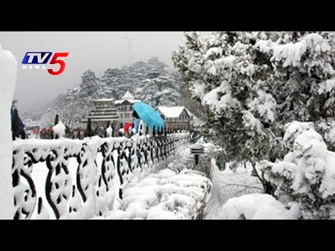 Snow Fall In Shimla | Fog And Cold Wave Sweeps North India | TV5 News