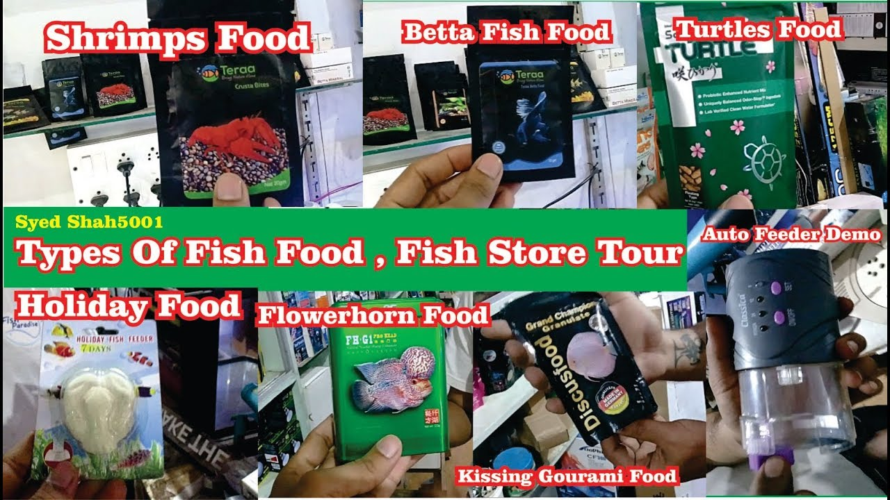 Best Food For Your Fish Types Of Aquarium Fish Food All Types Fish