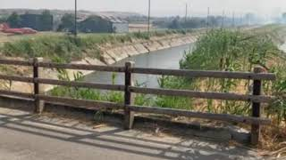 Divampa un incendio a Rio Vivo-Marinelle