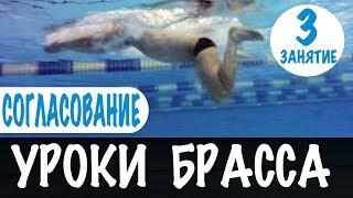 КЛЮЧ К УСПЕХУ В БРАССЕ. СОГЛАСОВАНИЕ РУК И НОГ. УРОКИ БРАССА. УРОК 3 @Swimmate.ru