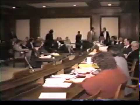 1994 - Taxation Committee hearing, Graduated Income Tax; Barbara Anderson, opposed
