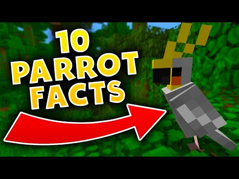 10 Minecraft PARROT FACTS! (Minecraft Snapshot 17w13b)