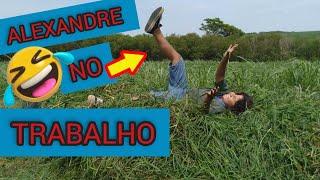 ANDANDO DE TRATOR | NO SÍTIO |  VACA, CAVALOS E BEZERROS , the little farm ALEXANDRE E BRINCADEIRAS