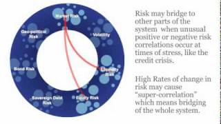 The Nature of Risk - Clusters & Bridging