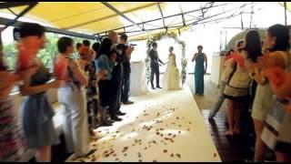 Свадьба Алексея и Елены ( клип)