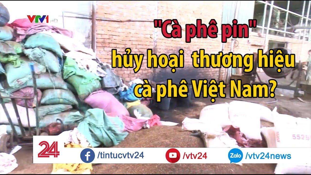 """Bê bối """"cà phê pin"""" ảnh hưởng thế nào tới ngành cà phê Việt Nam? – Tin Tức VTV24"""