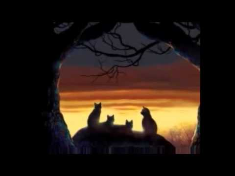 Warrior Cats Film  Trailer