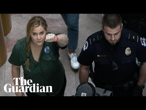 Amy Schumer arrested at Kavanaugh protest