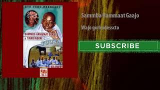 Sammba Hammaat Gaajo - Wajo gorkodesscto