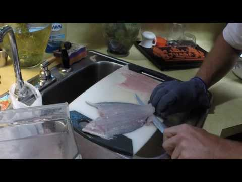 Quick easy flounder/fluke/sole/halibut cleaning in about 1:00 and how to correct a boning mistake.