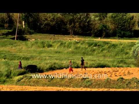 Rural life in Dras village: Jammu and Kashmir