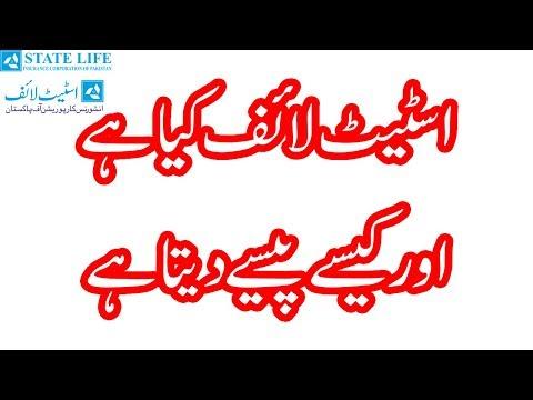 What Is State Life Insurance Corporation Of Pakistan | Syed Ayaz Raza