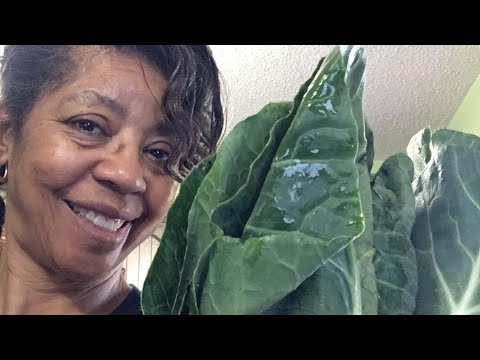 How to Clean and Cook Collard Greens