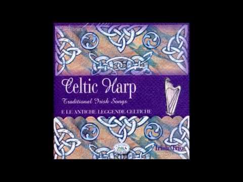 Brian Boru's March - Harp and tin whistle