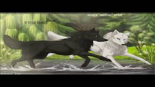 история любви одного волка