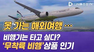 못 가는 해외여행…비행기는 타고 싶다? 저가항공사들 '…
