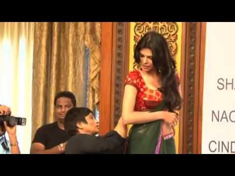 Hot Sherlyn Chopras Kamasutra 3 D At Cannes