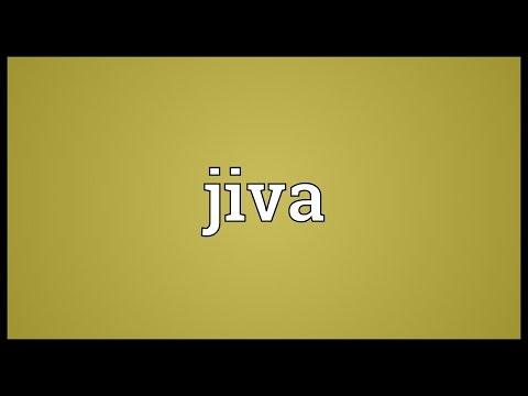 Jiva Meaning