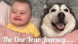 The Perfect One Year Time Lapse With My Baby and Husky, His Best Friend!!... [UNSEEN FOOTAGE!!]