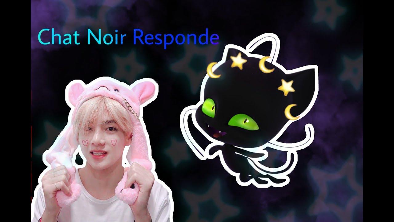 Chat Noir Responde