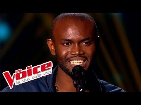 The Voice 2015│Alvy Zamé - One day (Asaf Avidan)│Blind Audition