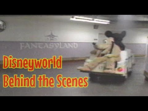 In search of excellence walt disney world behind the scenes in search of excellence walt disney world behind the scenes 1984 full segment publicscrutiny