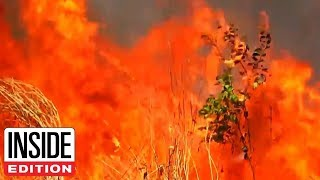 The Amazon Is on Fire The Amazon rainforest is burning. A record number of fires, over 72000, have been detected in the world's largest rainforest this year. Brazil's National Institute ..., From YouTubeVideos