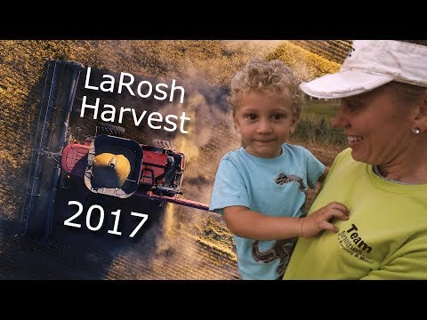 LaRosh 2017 Kansas Wheat Harvest
