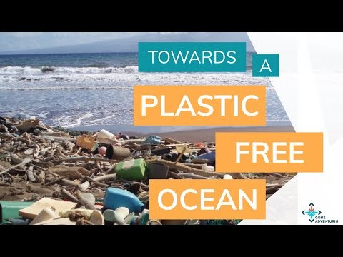 Towards a Plastic Free Ocean - What role for policy makers, civil society and business?