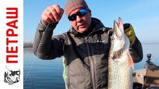 видео Щука » Сайт о рыбалке для начинающих