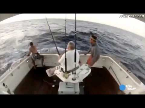 Marlin Jumps Into Boat--man Jumps Out