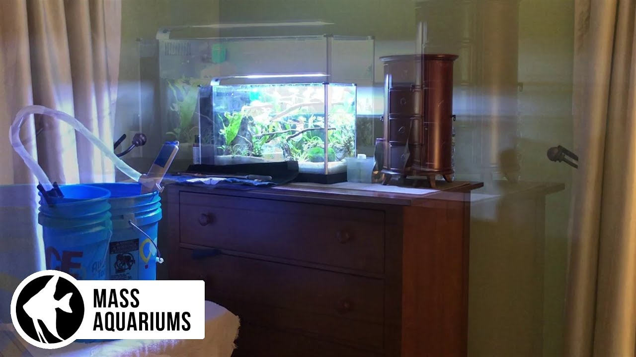 Fast Aquarium Water Changes Battery Powered Wand Youtube